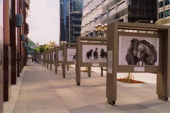 One World public art exhibit in Montreal by Roberto Dutesco